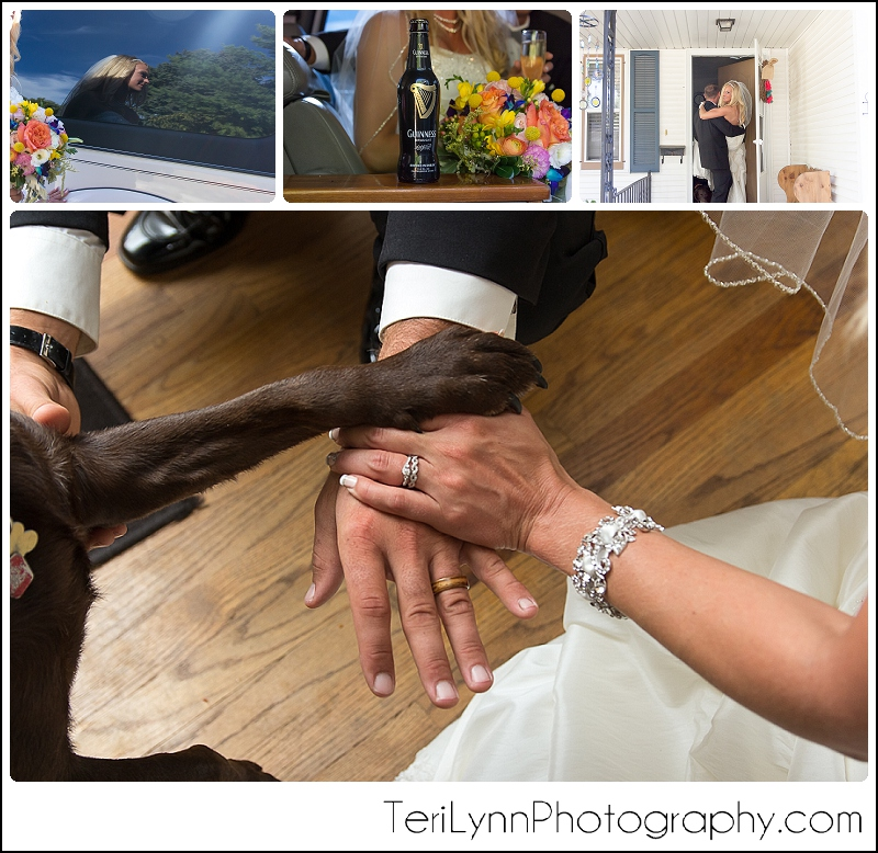 Dog in wedding photos, paw with wedding rings